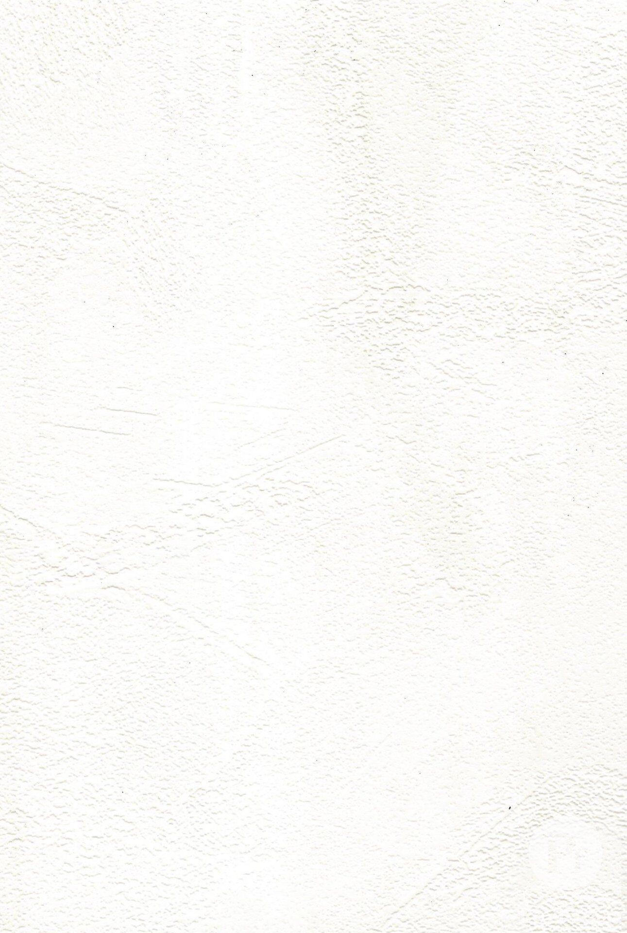 цвет бетон белый